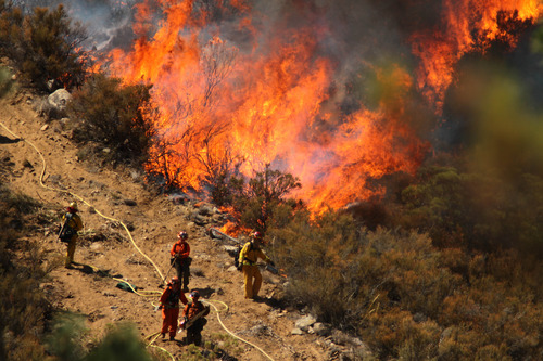 Crystal Chatham |  The Desert Sun via AP A female inmate hand crew from Puerta La Cruz and firefighters in an engine company with them set fire to reinforce the line to stave off part of the Mountain Fire burning up a hill toward them on Tuesday, July 16, 2013 off Apple Canyon Road near Lake Hemet, Calif. Tuesday, July 17th, 2013. Officials say the wildfire in the mountains west of Palm Springs has destroyed three houses and three mobile homes and is threatening dozens more residences.