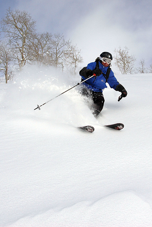 Francisco Kjolseth     Tribune file photo Spending a rough day at the office, mountain advanced pro guide Paul DeLong carves the fresh backcountry snow at Powder Mountain during a 2009 outing with a small group of skiers and boarders as part of their Snowcat Powder Safari.