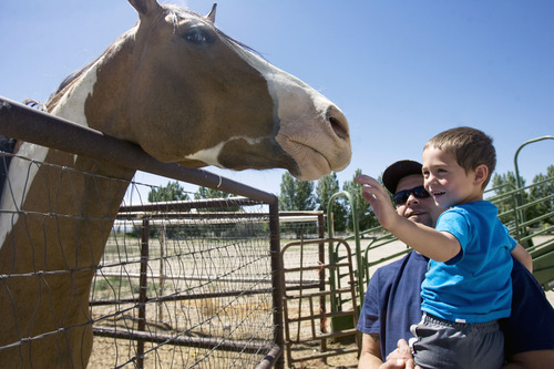 "Kim Raff  |  The Salt Lake Tribune Jason Kava and his son, Jason Jr., visit with a horse around the corner from their home in Castle Dale on June 21, 2013. Rural life suits Kava but makes it difficult to find qualified providers to treat ""JJ's"" autism."