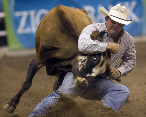 Rick Egan  | The Salt Lake Tribune   Jeremy Gardner, Live Oak, Calif., competes in the Steer Wrestling competition, in the Days of '47 Rodeo at EnergySolutions Arena, Wednesday, July 24, 2013.