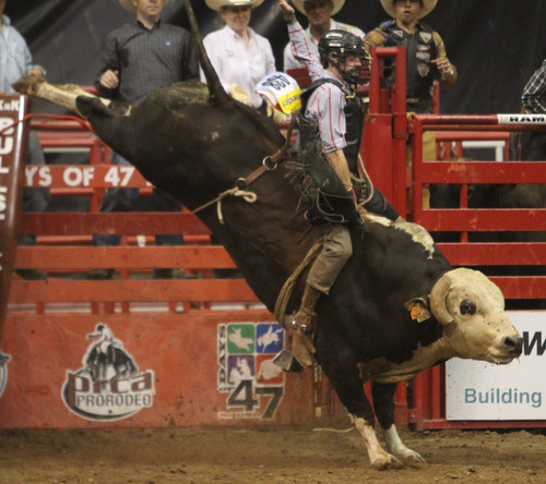 Rick Egan  | The Salt Lake Tribune   Ty Wallace, Collbran, Colo., competes in the Bull Riding competition, in the Days of '47 Rodeo at EnergySolutions Arena, Wednesday, July 24, 2013.