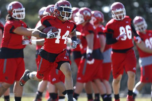 Chris Detrick     The Salt Lake Tribune Utah running back Lucky Radley runs the ball during spring practice Tuesday March 19, 2013.