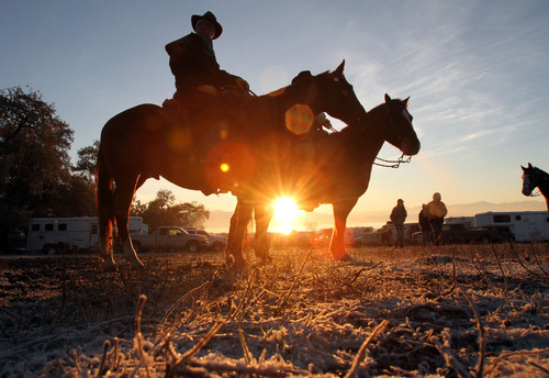 Francisco Kjolseth  |  The Salt Lake Tribune Dennis Ellis, left, and his son Trevor, both from Bountiful, listen in on instructions for all riders participating in the bison roundup as the sun comes up to melt away the early morning frost. Riders from near and far numbering 430 prepare to move a herd of more than 500 bison on Antelope Island during the 26th annual bison roundup on Friday, October 26, 2012.