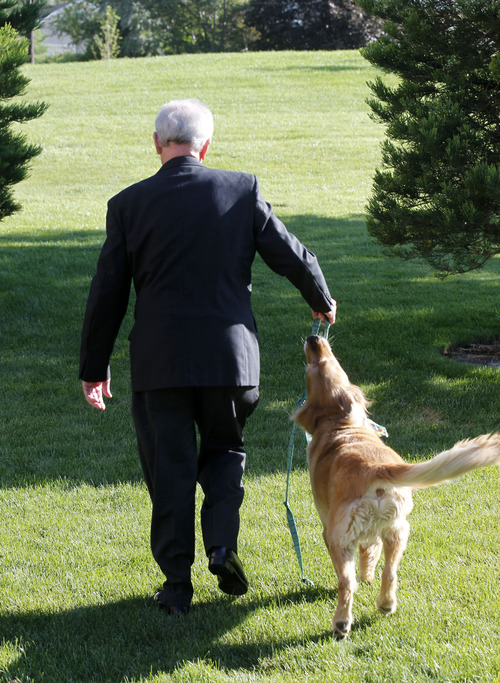 Al Hartmann  |  The Salt Lake Tribune Monsignor Terence Moore plays with his dog Bailey on a walk. The pastor of Saint John the Baptist Parish in Draper is retiring after serving 46 years in the Salt Lake City Diocese.