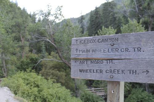 Jessica Miller | The Salt Lake Tribune A sign posted where Wheeler Canyon trail ends, and Ice Box Canyon trail and Art Nord trail begins. (July 30, 2013).