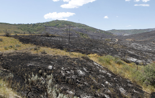Al Hartmann  |  The Salt Lake Tribune A view of the burned mountainside just south of S.R. 32 east of Wanship which burned Tuesday and destroyed a dozen houses in the Rockport Estates. The fire flared up again Wednesday afternoon.