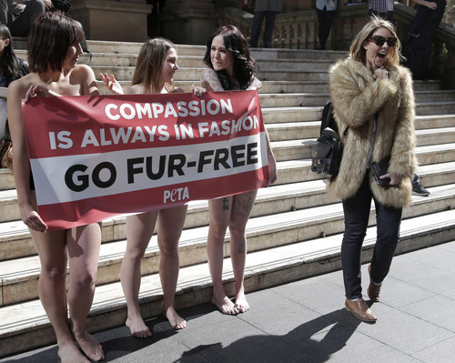 A passer-by, right, appears to mock anti-fur protesters Tanya Ward, left, Zoe Crawford and Jacqui House, right, who have stripped to their underwear in an attempt to persuade clothing designers to stop using animal fur in Sydney, Australia, Wednesday, Aug. 21, 2013. The protestors from PETA, People for the Ethical Treatment of Animals, are protesting at Sydney Town Hall where a fashion festival is set to begin. (AP Photo/Rick Rycroft)