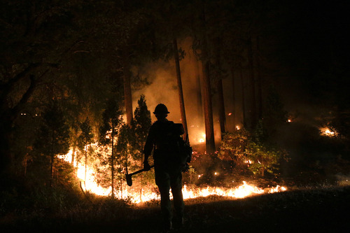 Firefighter John Curtis, of Big Bear, Calif., watches the Rim Fire burn near Yosemite National Park, Calif., on Saturday, Aug. 24, 2013. Fire crews are clearing brush and setting sprinklers to protect two groves of giant sequoias as a massive week-old wildfire rages along the remote northwest edge of Yosemite National Park. (AP Photo/Jae C. Hong)