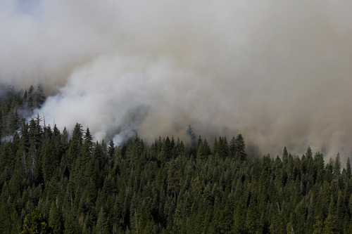 A smoke rises from the Rim Fire near Yosemite National Park, Calif., on Sunday, Aug. 25, 2013. With winds gusting to 50 mph on Sierra mountain ridges and flames jumping from treetop to treetop, hundreds of firefighters have been deployed to protect this and other communities in the path of the Rim Fire raging north of Yosemite National Park. (AP Photo/Jae C. Hong)