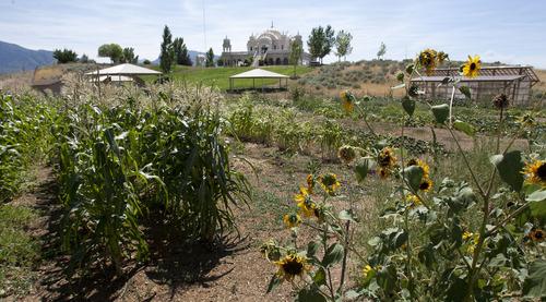 Steve Griffin | The Salt Lake Tribune The Sri Sri Radha Krishna Temple sits above a garden in Spanish Fork on Thursday, Aug. 15, 2013.
