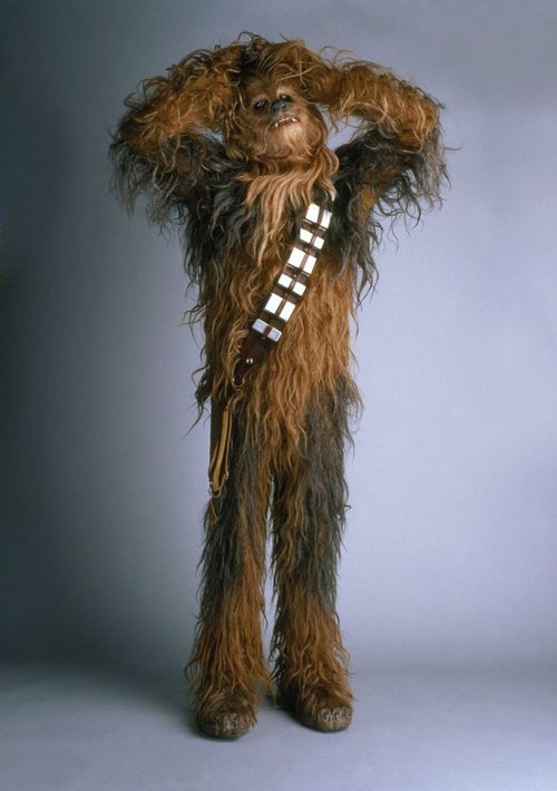 Peter Mayhew as Chewbacca. Mayhew will appear at the first inaugural Salt Lake Comic Con in September at the Salt Palace. (Courtesy LucasFilm)