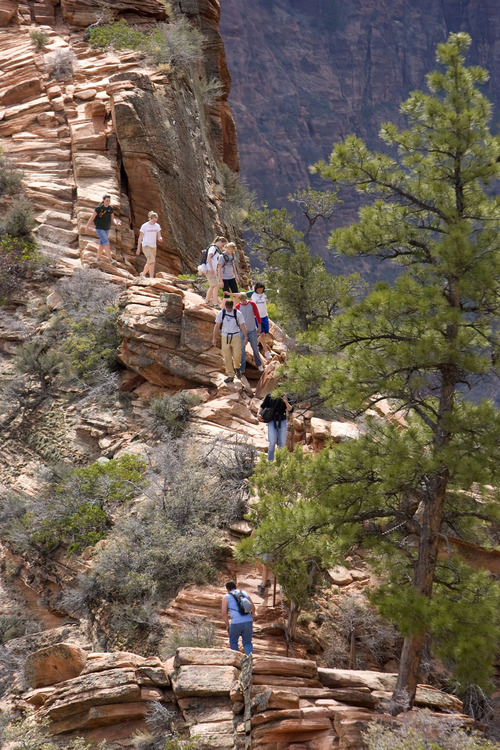 Hikers take a well deserved rest at the top of Angels Landing. It's one of the premier hikes in Zion National Park, which takes the hiker up a steep rock spine that climbs to a magnificent view of the Virgin River and Zion Canyon below. The hike is not for those with fear of heights. An anchor chain is embedded in the rock in steep places along the trail that hikers can grab onto for safety.   Al Hartmann/The Salt Lake Tribune     3/25/2009