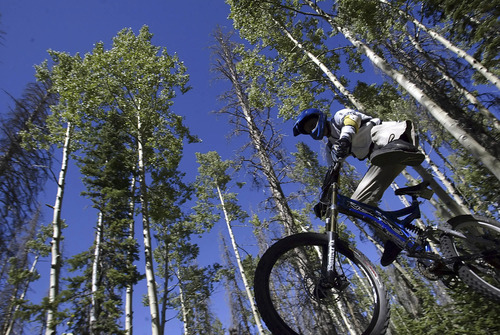 Brian Head,Utah--9/17/2005-- Ben Pierce, 19, of St. George, gets some big air after launching off of a ram at Brian Head resort.  Mountain biking at Brian Head.  ********************************** Photo By: Chris Detrick /Salt Lake Tribune File Number: Brian Head Bike CD04