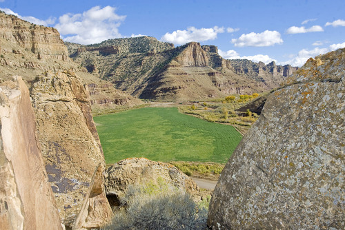 Al Hartmann  |  Salt Lake Tribune Ranch with green alfalfa field is tucked beneath the cliffs of Nine Mile Canyon in the western part of the Book Clifs.