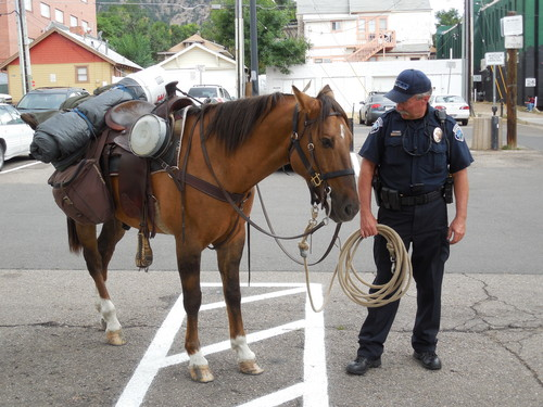 Boulder police look after a horse after its rider was arrested on four charges, including suspicion of riding under the influence and animal cruelty, Monday, Sept. 9, 2013, in Boulder, Colo. (AP Photo/Daily Camera, Mitchell Byars) NO SALES