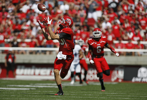Scott Sommerdorf   |  The Salt Lake Tribune Utah Utes wide receiver Sean Fitzgerald (83) pulls in a pass from QB Travis Wilson, and cruised 80 yards for Utah's second TD, for a 14-0 lead. Utah built a 49-0 halftime lead over Weber State, Saturday, September 7, 2013.