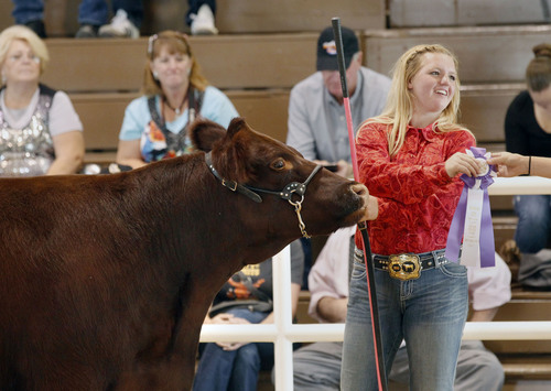 Al Hartmann  |  The Salt Lake Tribune Morgan Perkins is pleased as she earns a reserve grand champion ribbon for her Short Horned Maine Cross cow Sunday afternoon on the final day of the Utah State Fair. She represented the SB Cattle Ranch in Smithfield, Utah.