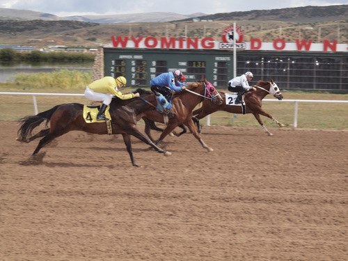 Joan Ramos   Courtesy  The honor of winning the first race in four years at  Wyoming Downs track in Evanston went to Sacred Six (2), ridden by jockey Casey Greene. Wills Cloudy Secret (4), owned by Lawrence Blonquist of Farmington, finished fourth and out of the money. The track opened , Sept. 14, 2013.