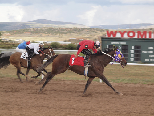 Courtesy of Joan Ramos Jockey Daniel Carillo drove Lexxee's Songbird (1) to a relatively easy victory over a Utah horse, Trixie P (2), in the second race Saturday, Sept. 14, 2013, at Wyoming Downs racetrack in Evanston, Wyo.