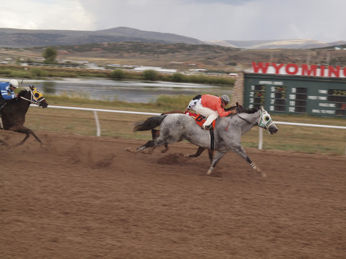 Joan Ramos   Courtesy  Quarter horse Running Away (6), ridden by jockey Justin Vanderwoude, pulled ahead of Country Cartel near the finish line to win the third race Saturday, Sept. 14, 2013, at Wyoming Downs, back in business for the first time in four years.