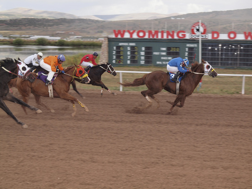 Joan Ramos   Courtesy  The No. 3 horse, Great Wonder, a quater horse riden by Jose Guzman, crosses the finish line first in the fourth race Saturday, Sept. 14, 2013, at Wyoming Downs. Saturday was the first time in four years the track featured live racing.