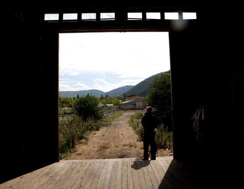 Steve Griffin | The Salt Lake Tribune  Cheese maker Fernando Chavez-Sandoval stands in the barn at Gold Creek Farm in Woodland, Utah, Monday Sept. 11, 2013.