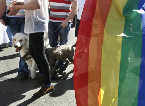 Scott Sommerdorf      The Salt Lake Tribune Provo's first Pride Festival, held at Memorial Park in Provo, Saturday, September 21, 2013.