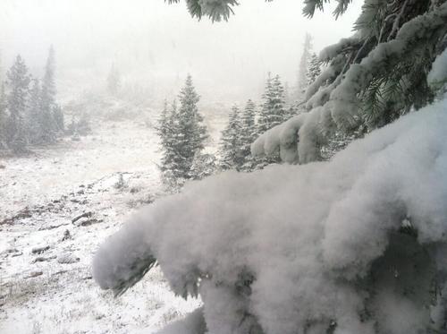 Snowfall at Bald Mountain Pass around 1:15 p.m. Sunday, Sept. 22, 2013. Courtesy Matt Baydala