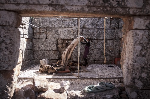 In this Friday, Sept. 27, 2013 photo, a displaced Syrian girl makes her bed after waking up near Kafer Rouma, in ancient ruins used as temporary shelter by those families who have fled from the heavy fighting and shelling in the Idlib province countryside of Syria.(AP Photo)