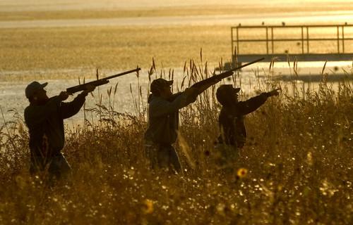 Al Hartmann     Tribune file photo  Hunters wait for ducks in the early morning light hunters at Farmington Bay.