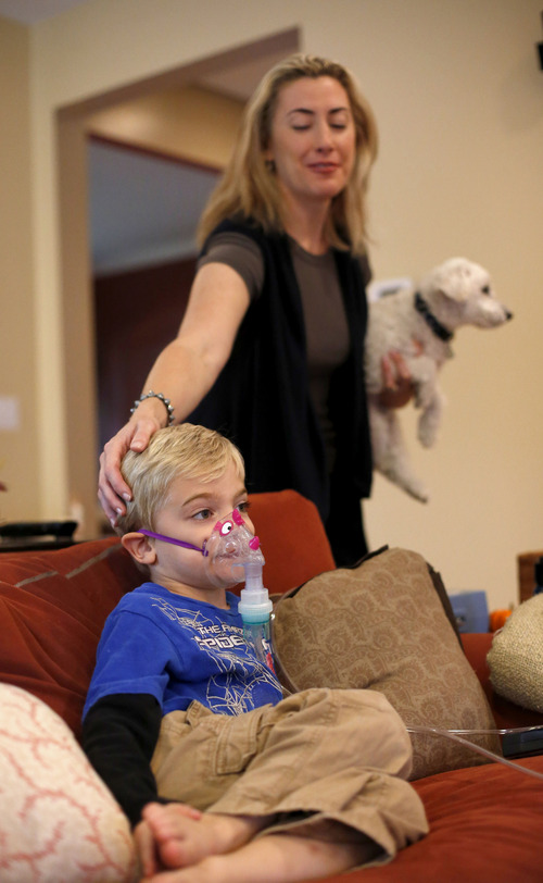 Charles Rex Arbogast  |  The Associated Press Monique Howard holds Waldo, the dog, as she caresses her son Carter's head while he sits through his asthma treatment at their Northbrook, Ill., home. On the days when asthma gives Carter the most trouble it reminds her about how doctors at Rush University Medical Center had to stop submitting applications for research grants to study childhood asthma and other diseases and disorders. Hospital officials have said the shutdown could have delayed funding for nearly half a year.