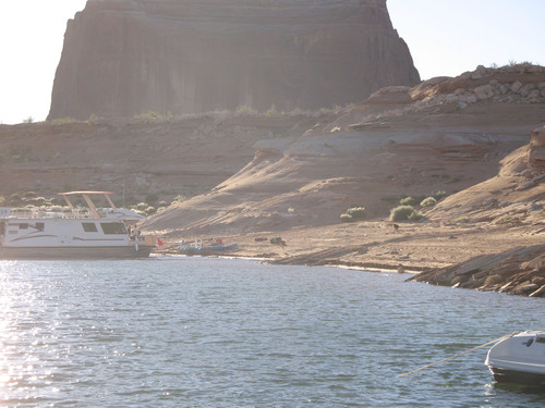 Ranger Christian Roper | Courtesy National Park Service A young male black bear was hanging out and visiting campers near Face Canyon at Lake Powell before wildlife officers captured the animal and moved it to a remote location.