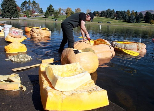 Keith Johnson  |  The Salt Lake Tribune Andrew Israelsen puts the finishing touches on a giant hollowed out pumpkin in preparation for the Pumpkin Regatta at Sugar House Park in Salt Lake City, October 19, 2013. Participants raced pumpkins weighing between 500 and 1,000 pounds.