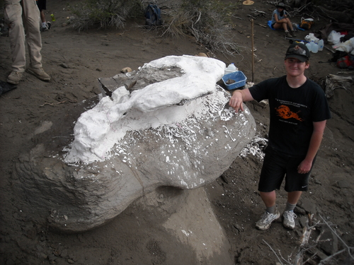 "Raymond M. Alf Museum of Paleontology  |  Courtesy photo Webb Schools student Kevin Terris at the site where he found the skeleton of ""Joe"" the baby Parasaurolophus."