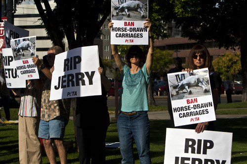 Chris Detrick  |  Tribune file photo People hold signs during a vigil for Jerry the horse put on by Utah Animal Rights Coalition outside of the Salt Lake City and County Building last month. Jerry the horse collapsed and later died, spurring some to call for a ban on horse-carriage rides. The City Council on Tuesday voted against a ban.