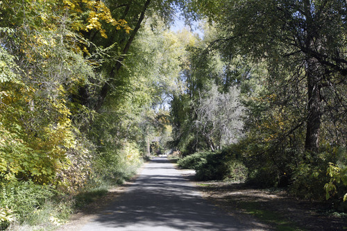 Al Hartmann  |  The Salt Lake Tribune Long, private tree-lined driveway near where Mitt Romney plans to build a new house.