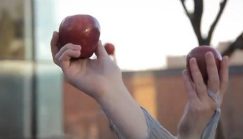 "(Courtesy of Zack Brym     Screenshot) A tree bears fruit in ""Prune to Wild."""