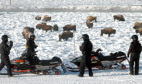 ** FILE ** Snowmobilers stop to view bison inside Yellowstone National Park, Wyo., in January 2002. Four former directors of the National Park Service asked Interior Secretary Gale Norton, Tuesday, May 20, 2003, to reconsider a decision to allow snowmobilers to keep riding in Yellowstone and Grand Teton national parks. (AP Photo/Billings Gazette, David Grubbs, File)