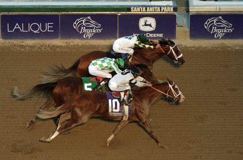 Jockey Gary Stevens, top, rides Mucho Macho Man to victory in the Breeders' Cup Classic horse race ahead of Will Take Charge, bottom, and Declaration of War at Santa Anita Park Saturday, Nov. 2, 2013, in Arcadia, Calif. (AP Photo/Jae C. Hong)