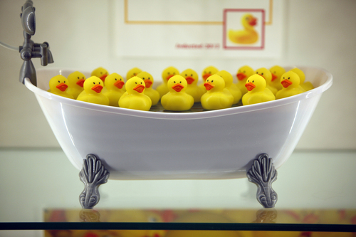 Rubber ducks are on display during the National Toy Hall of Fame ceremony at the National Museum of Play at The Strong in Rochester, N.Y., Thursday, Nov. 7, 2013. The rubber duck and the ancient game of chess were inducted into the Toy Hall of Fame Thursday, beating out 10 other finalists including bubbles, the board game Clue, and Nerf toys. (AP Photo/Democrat & Chronicle, Carlos Ortiz)  MAGS OUT; NO SALES