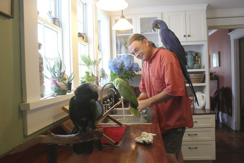 Courtesy photo Marc Johnson is the founder and CEO of Foster Parrots Ltd.