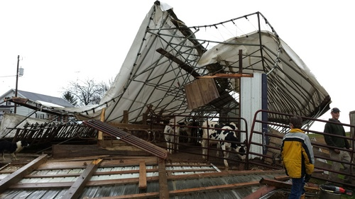 This photo provided by Dodge County Emergency Management shows cattle shed on a family farm in the Town of Hustisford was damaged Sunday, Nov. 17, 2013 when severe weather moved through the area. Dodge County Emergency Management Director Joseph Meagher says no cattle were injured. (AP Photo/Dodge County Emergency Management, Joseph Meagher)