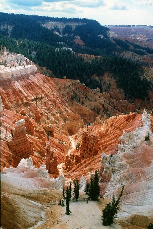 Al Hartmann  |  The Salt Lake Tribune  Cedar Breaks National Monument.