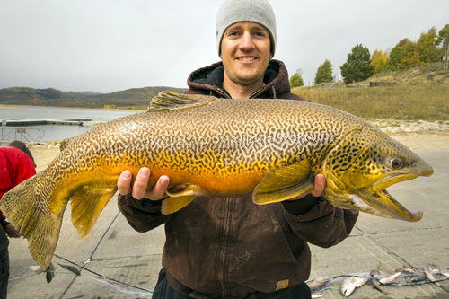Here you go four top spots for fall fishing in utah the for Best fishing in utah