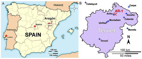 Courtesy of James Kirkland Teruel, the Spanish province in which Europelta was found.