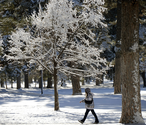 Al Hartmann  |  The Salt Lake Tribune Fresh snow and cold temperatures cling to trees in Liberty Park  Wednesday morning December 4 after the first winter snowstorm of the season.