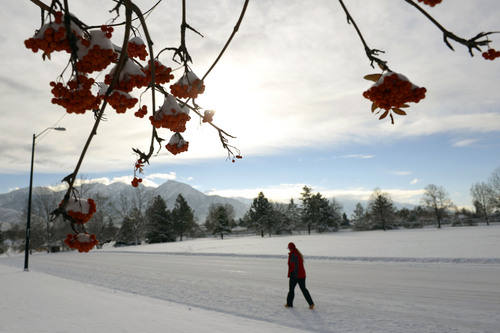 Al Hartmann  |  The Salt Lake Tribune Fresh snow and cold temperatures greet a walker in Sugarhouse Park Wednesday December 4 after the first  winter snow storm of the season.