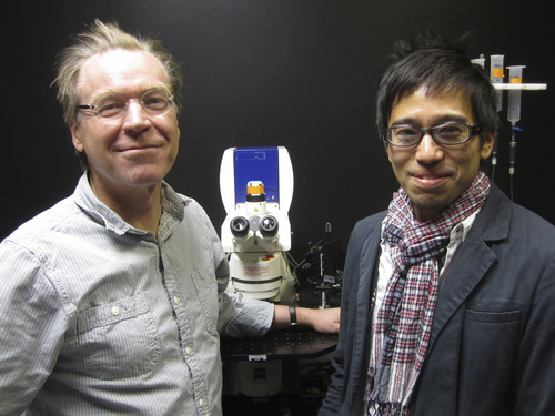 Lee J. Siegel   Courtesy University of Utah                                University of Utah biologists Erik Jorgensen and Shigeki Watanabe have discovered a new, ultrafast way in which brain cells take only one-tenth of a second to recycle tiny bubbles known as vesicles that transmit chemical nerve signals from one nerve cell to the next.
