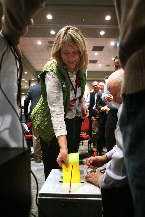 Scott Sommerdorf   |  The Salt Lake Tribune A delegate votes as The Republican State Central Committee met to choose three names to send to the governor to replace AG John Swallow. After five ballots they chose: Sean Reyes, Robert Smith, and finally Brian Tarbet, Saturday December 13 2013.