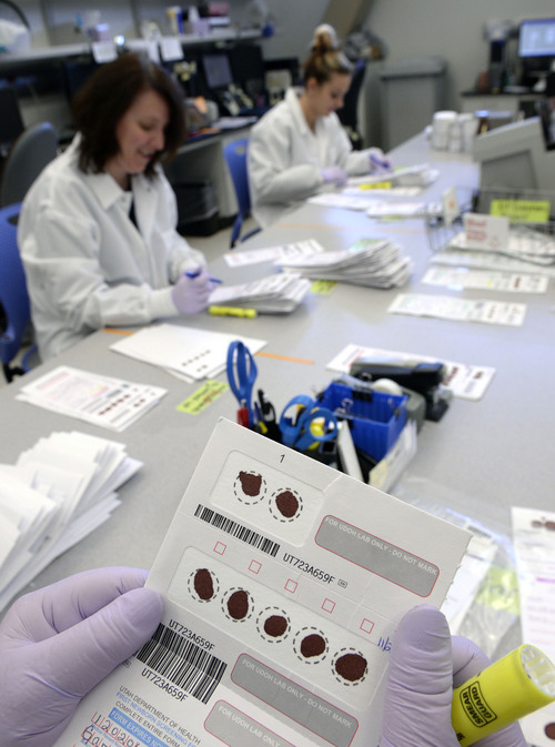 Al Hartmann  |  The Salt Lake Tribune Laboratory technicians check the viability of blood samples on the first newborn screening cards at the Utah Department of Health lab. Sometimes the forms are filled out incorrectly and others don't have testable blood samples. Utah hospitals are slower than most of their peers nationally in processing heel prick tests that determine if newborns have rare fatal diseases.